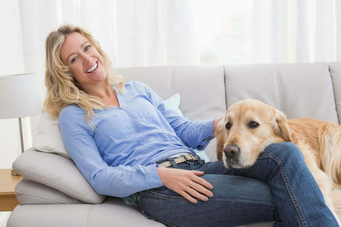 image-pets and renting