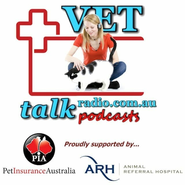 VETtalk Video and Podcasts