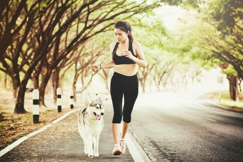Image-Keep Your Dog Fit and Healthy