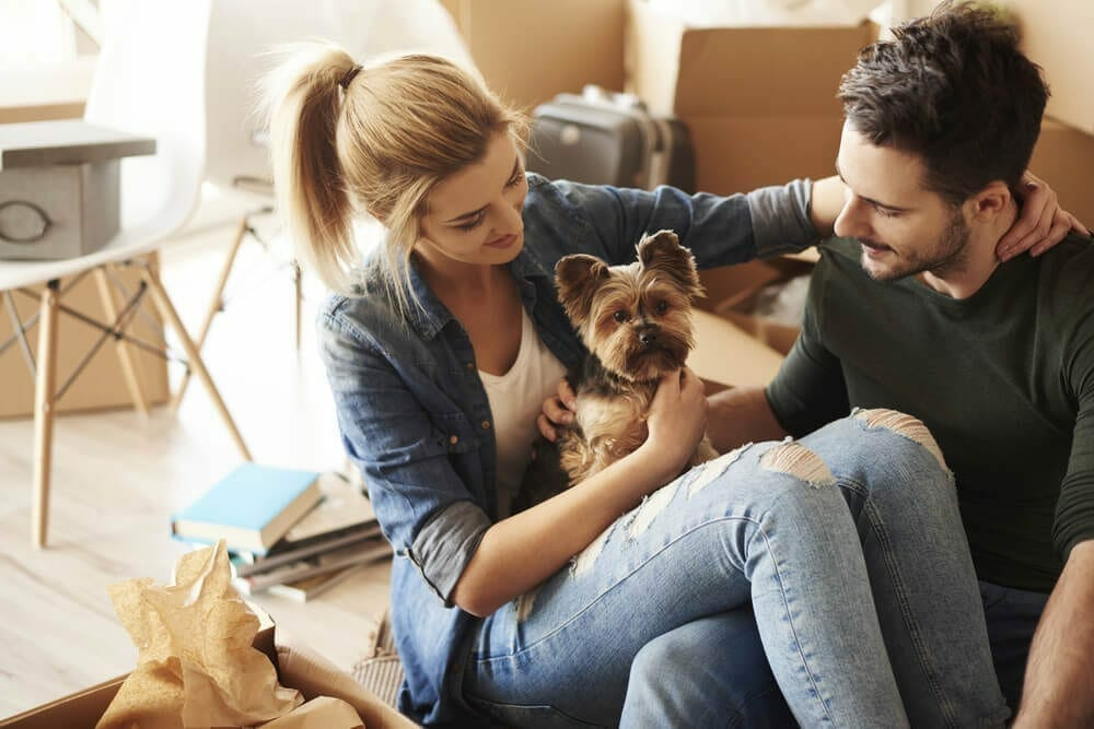 image-Renting With Pets