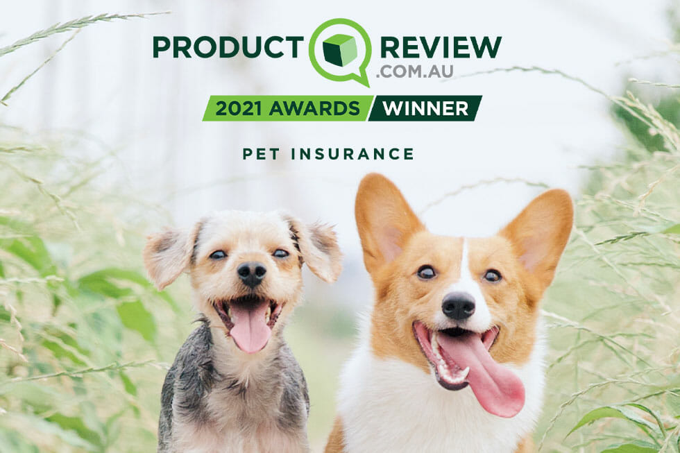 2020 product review awards