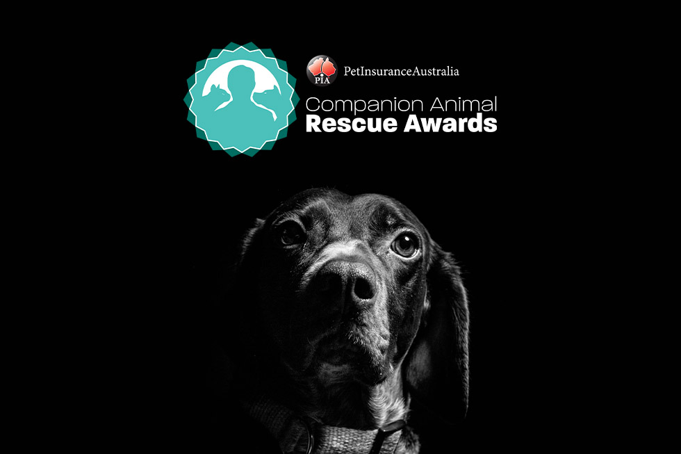 2021 rescue awards